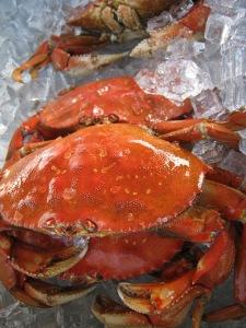 Fresh Crab this Saturday