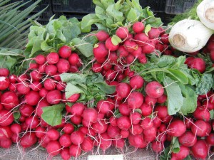Crunchy radishes from RJ Farms.