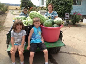 3 Generations on Leones Farm help pick the melons!