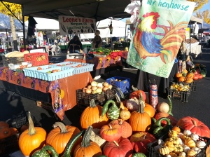 Gorgeous Pumpkins and gourds at Leone's Farms!