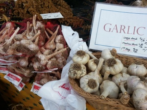 Pitkin-Winterrowd Farms Garlic...