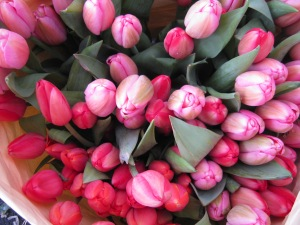 Tulips from C and K flowers.
