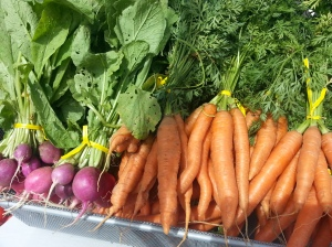 Certified Organic Produce now from Simington Gardens and Kiyokawa Orchards