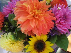 Brilliant colored  bouquets at this time of year from 3 farms!