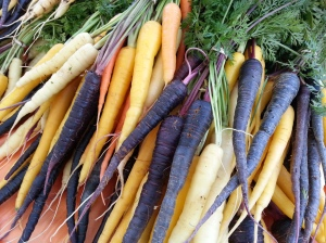 Tri-colored carrots from Caldwell Family Farms