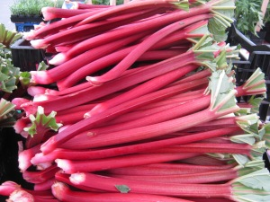 The first Rhubarb too!