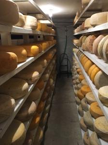 Taste Cada Dia cheese this Saturday!